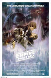 Star Wars: The Empire Strikes Back - The Saga Continues Movie Poster Prints